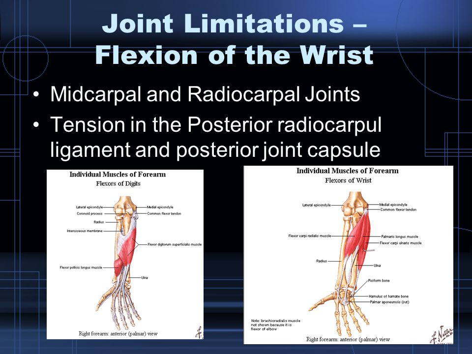 Joint Limitations – Flexion of the Wrist