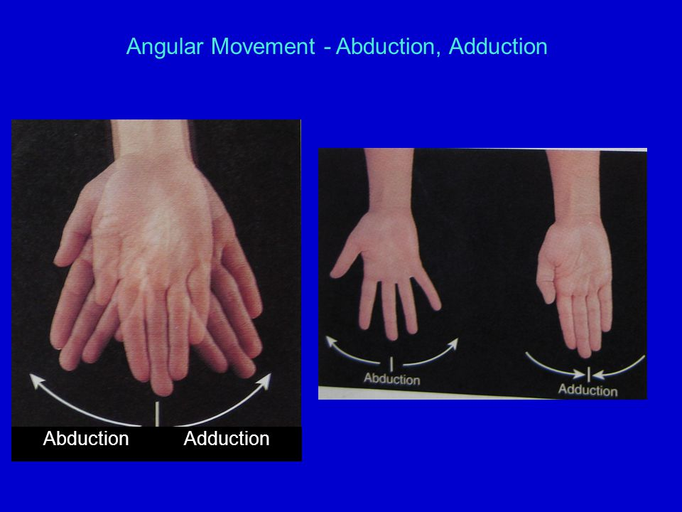 Angular Movement - Abduction, Adduction