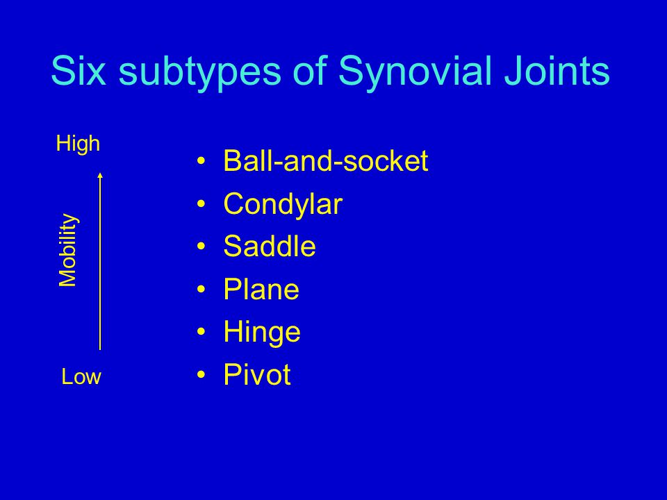 Six subtypes of Synovial Joints