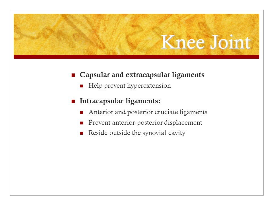 Knee Joint Capsular and extracapsular ligaments