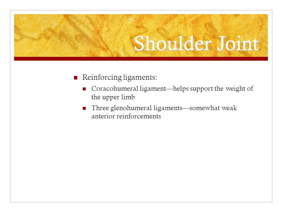 Shoulder Joint Reinforcing ligaments: