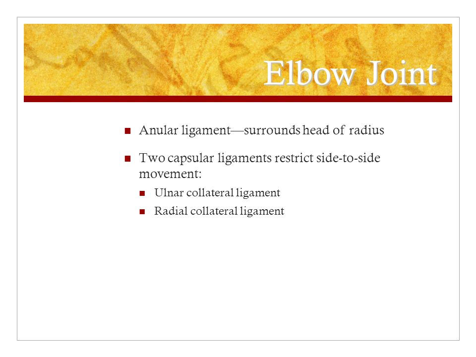 Elbow Joint Anular ligament—surrounds head of radius