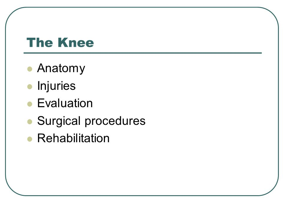 The Knee Anatomy Injuries Evaluation Surgical procedures