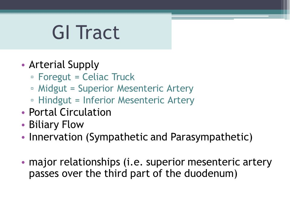 GI Tract Arterial Supply Portal Circulation Biliary Flow