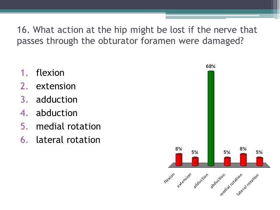 16. What action at the hip might be lost if the nerve that passes through the obturator foramen were damaged