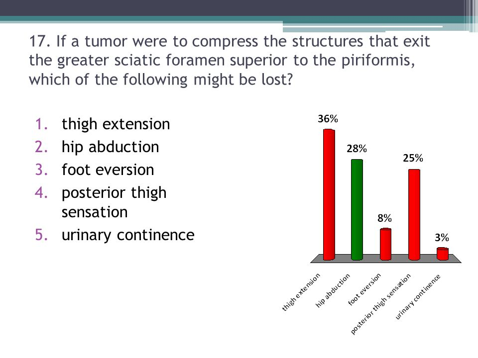 17. If a tumor were to compress the structures that exit the greater sciatic foramen superior to the piriformis, which of the following might be lost