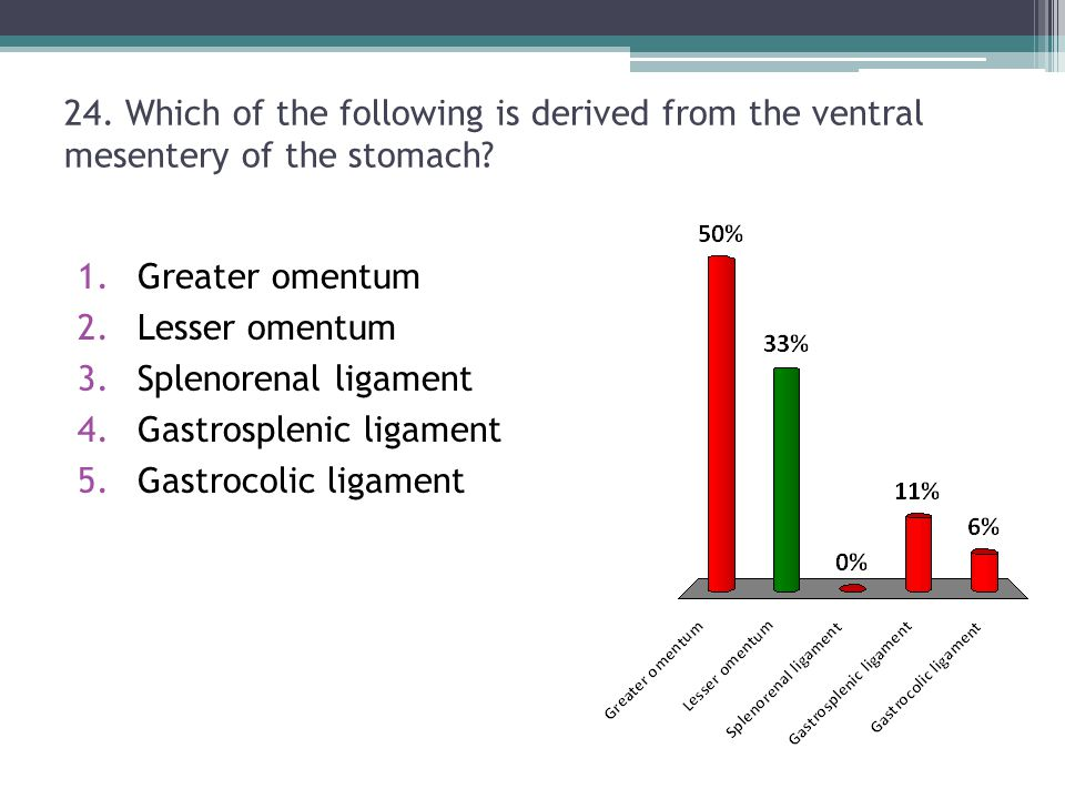 24. Which of the following is derived from the ventral mesentery of the stomach