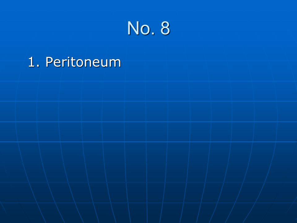 No. 8 1. Peritoneum