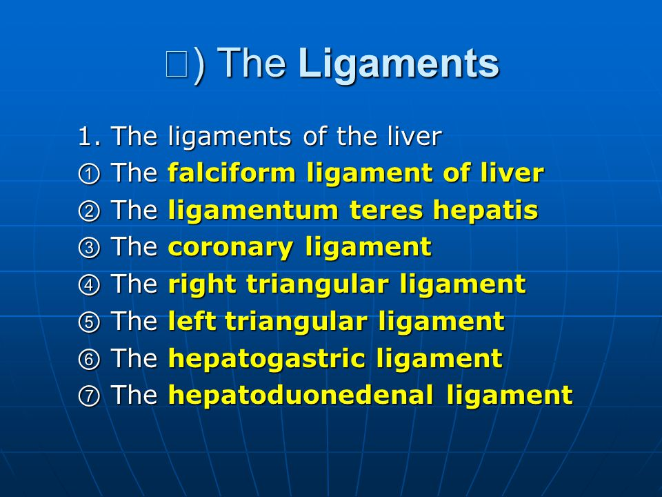 Ⅲ) The Ligaments 1. The ligaments of the liver