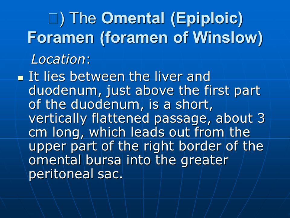 Ⅱ) The Omental (Epiploic) Foramen (foramen of Winslow)