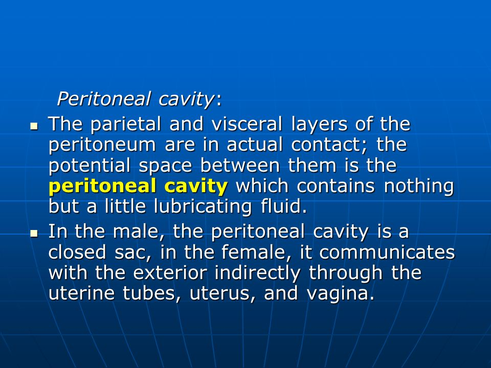 Peritoneal cavity: