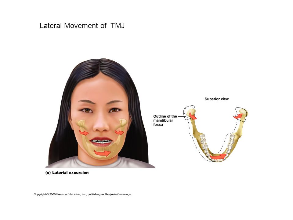 Lateral Movement of TMJ