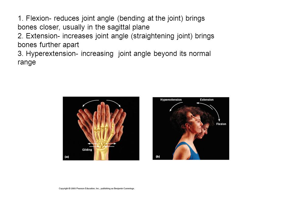 1. Flexion- reduces joint angle (bending at the joint) brings bones closer, usually in the sagittal plane