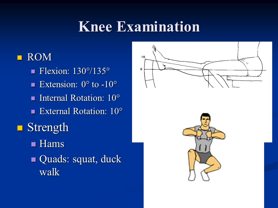 Knee Examination Strength ROM Hams Quads: squat, duck walk