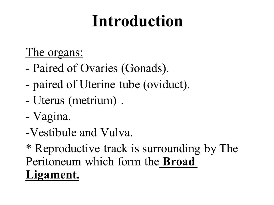 Introduction The organs: - Paired of Ovaries (Gonads).