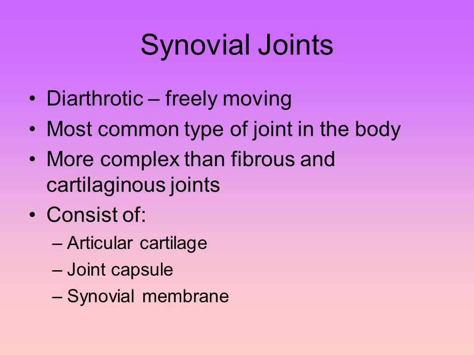 Synovial Joints Diarthrotic – freely moving