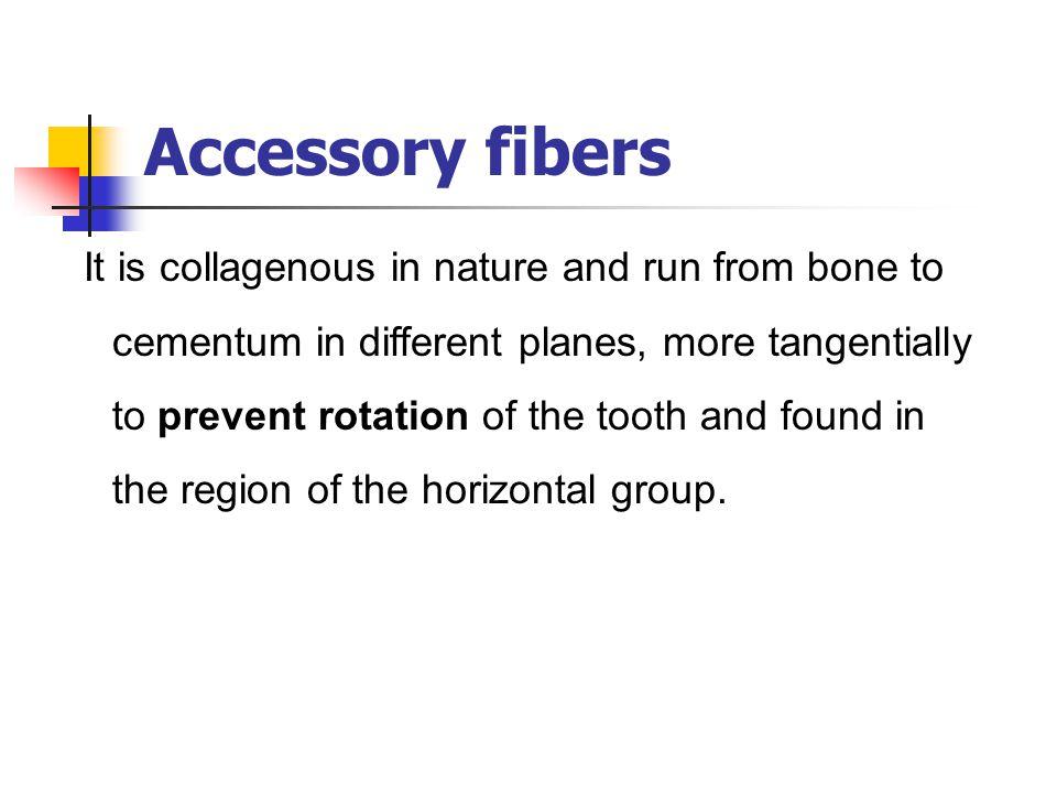 Accessory fibers