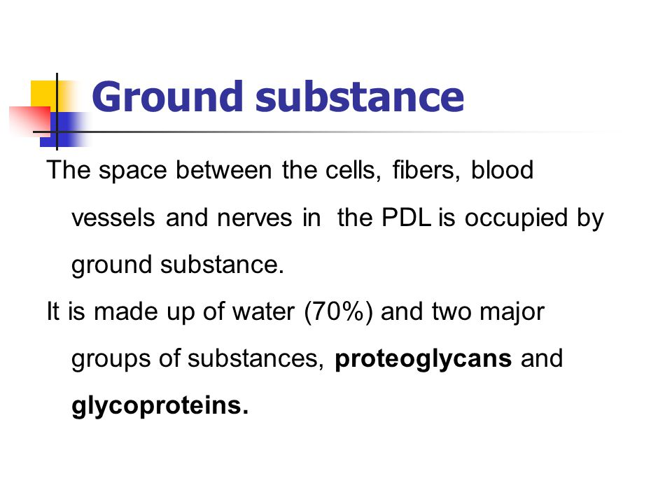 Ground substance The space between the cells, fibers, blood vessels and nerves in the PDL is occupied by ground substance.