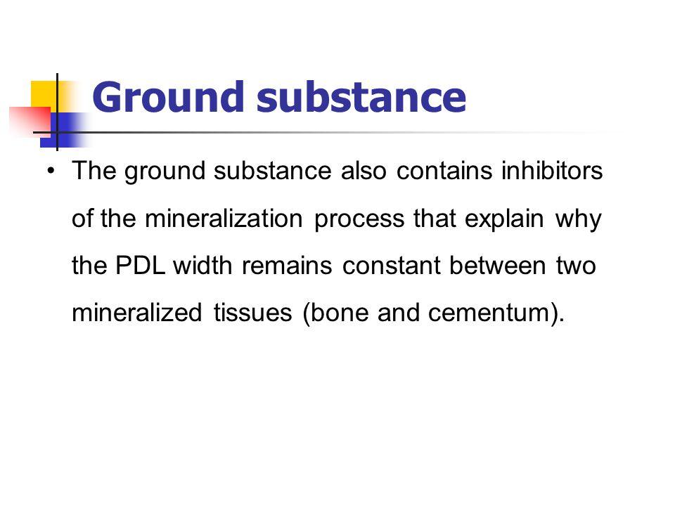 Ground substance