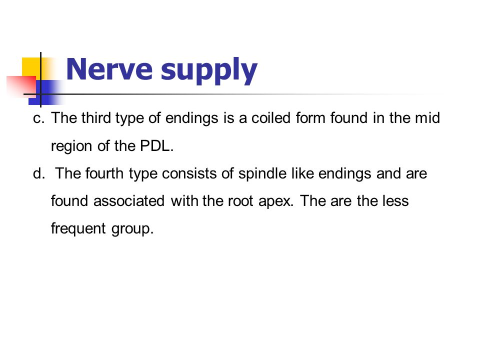 Nerve supply The third type of endings is a coiled form found in the mid region of the PDL.