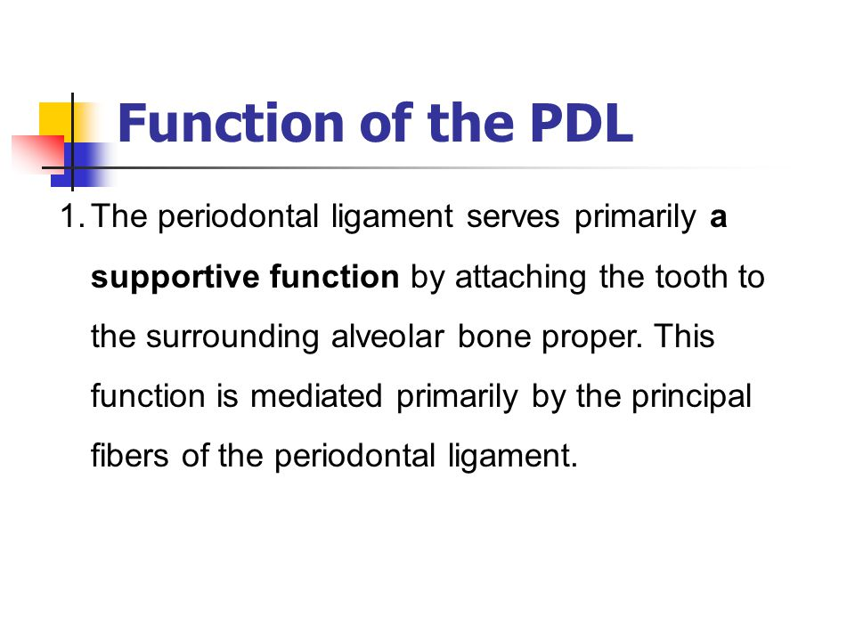 Function of the PDL