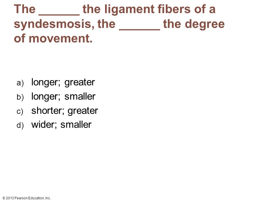 The ______ the ligament fibers of a syndesmosis, the ______ the degree of movement.