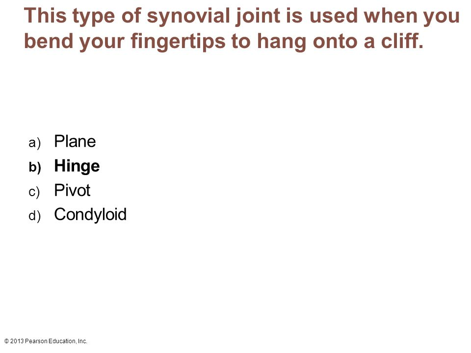 This type of synovial joint is used when you bend your fingertips to hang onto a cliff.
