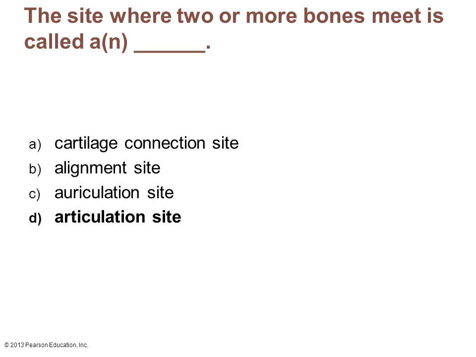 The site where two or more bones meet is called a(n) ______.