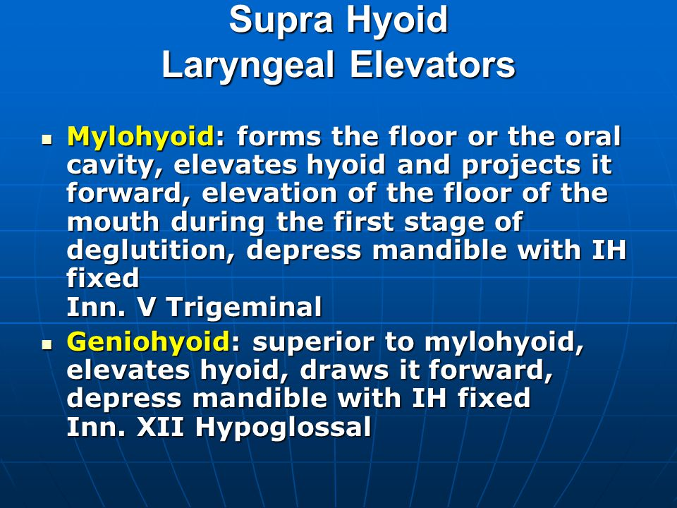 Supra Hyoid Laryngeal Elevators