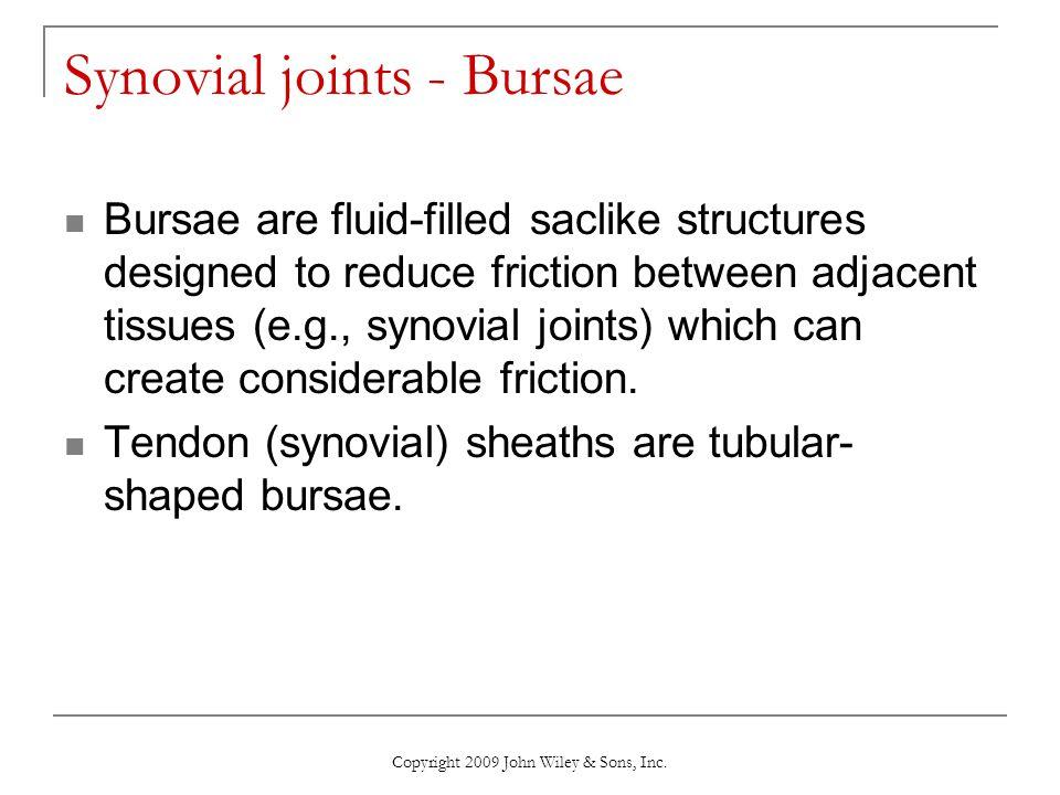 Synovial joints - Bursae