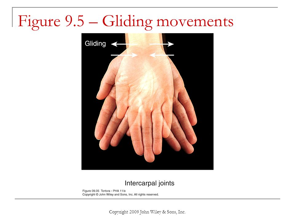 Figure 9.5 – Gliding movements