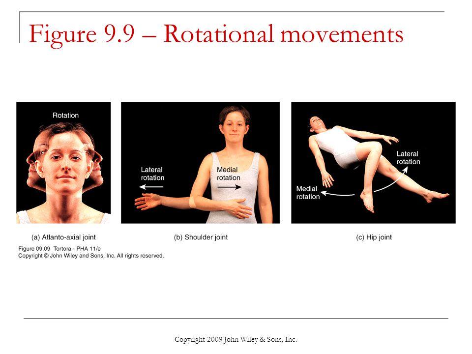 Figure 9.9 – Rotational movements