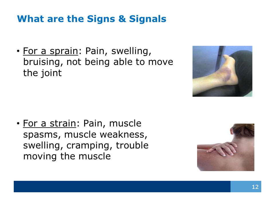 What are the Signs & Signals