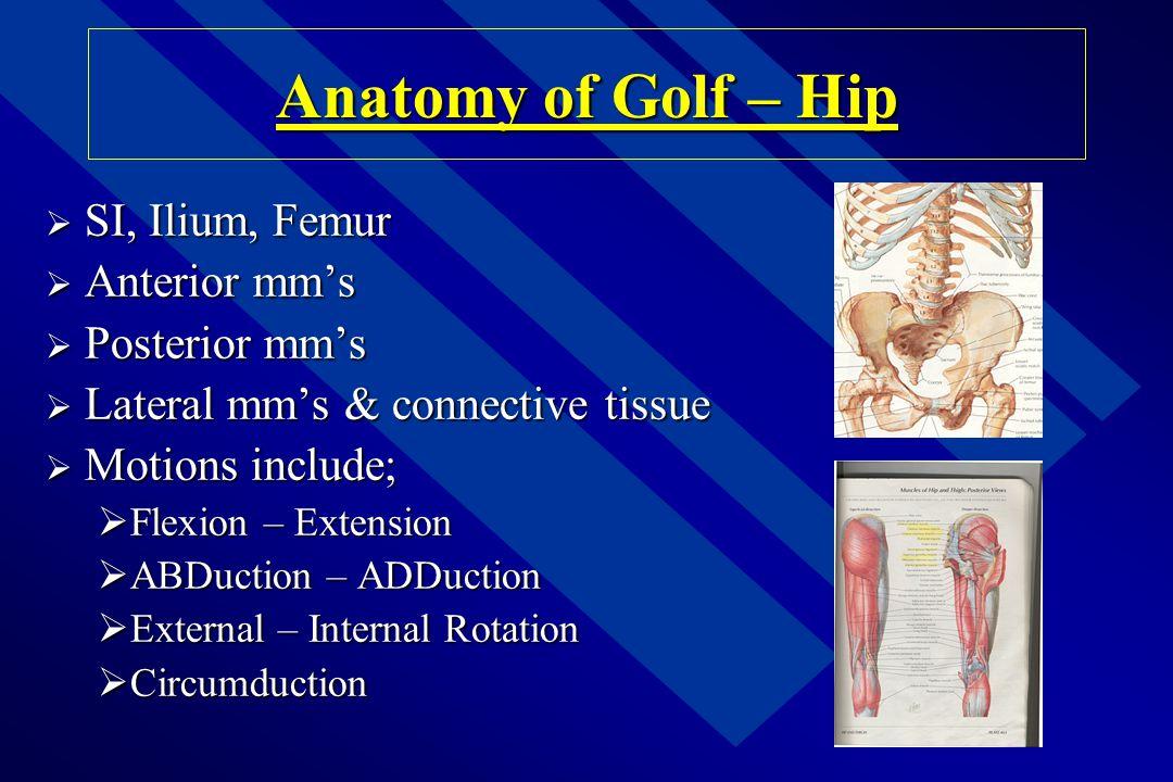 Anatomy of Golf – Hip SI, Ilium, Femur Anterior mm's Posterior mm's