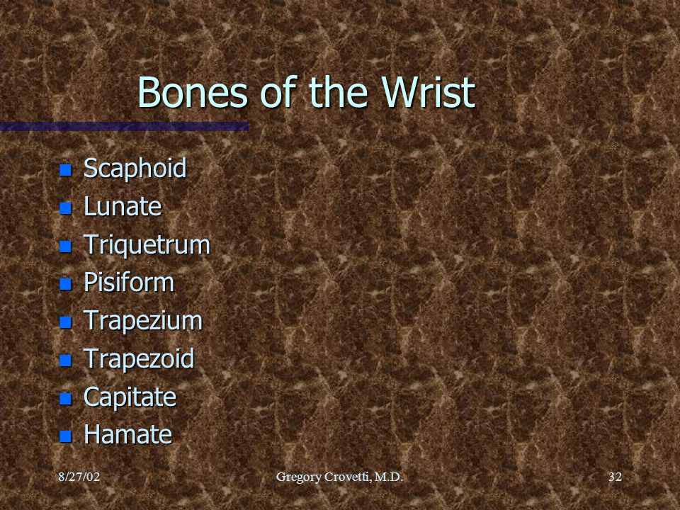 Bones of the Wrist Scaphoid Lunate Triquetrum Pisiform Trapezium