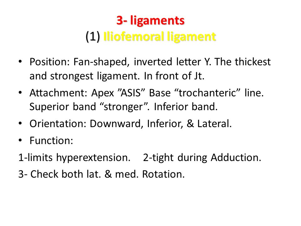 3- ligaments (1) Iliofemoral ligament