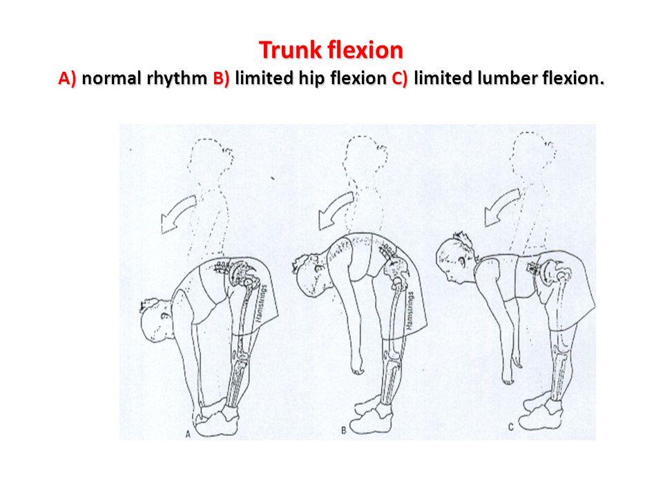 Trunk flexion A) normal rhythm B) limited hip flexion C) limited lumber flexion.