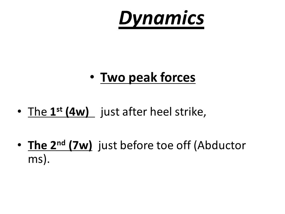 Dynamics Two peak forces The 1st (4w) just after heel strike,