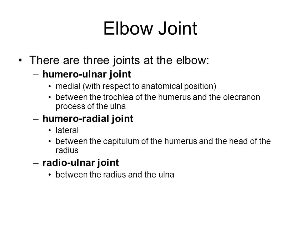 Elbow Joint There are three joints at the elbow: humero-ulnar joint
