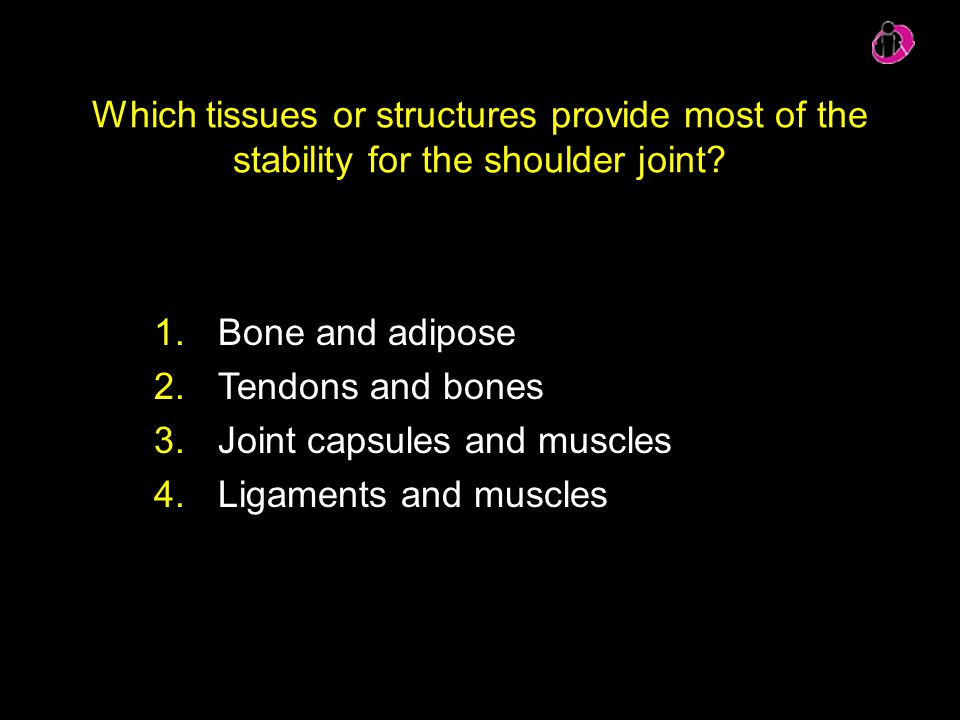 Joint capsules and muscles Ligaments and muscles