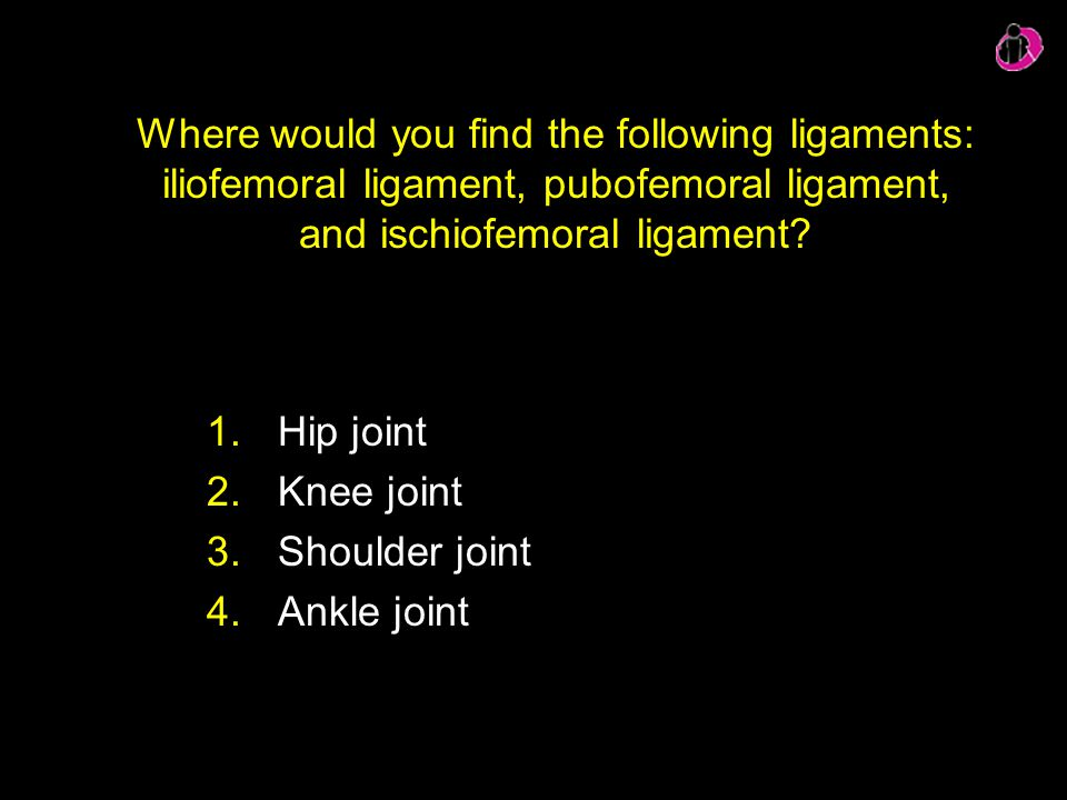 Where would you find the following ligaments: iliofemoral ligament, pubofemoral ligament, and ischiofemoral ligament