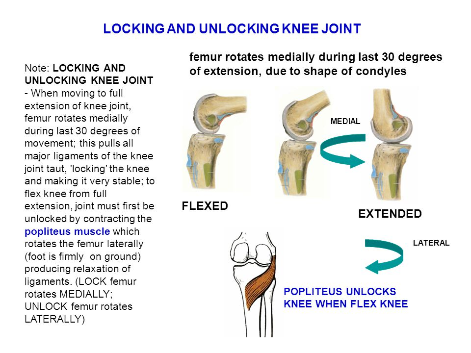 LOCKING AND UNLOCKING KNEE JOINT