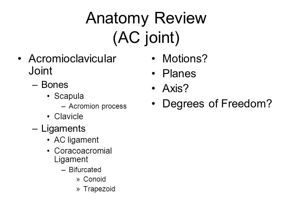 Anatomy Review (AC joint)