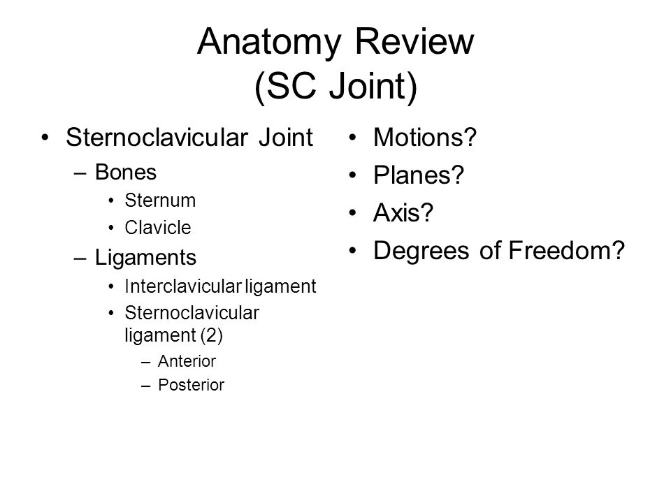 Anatomy Review (SC Joint)