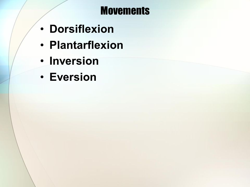 Movements Dorsiflexion Plantarflexion Inversion Eversion