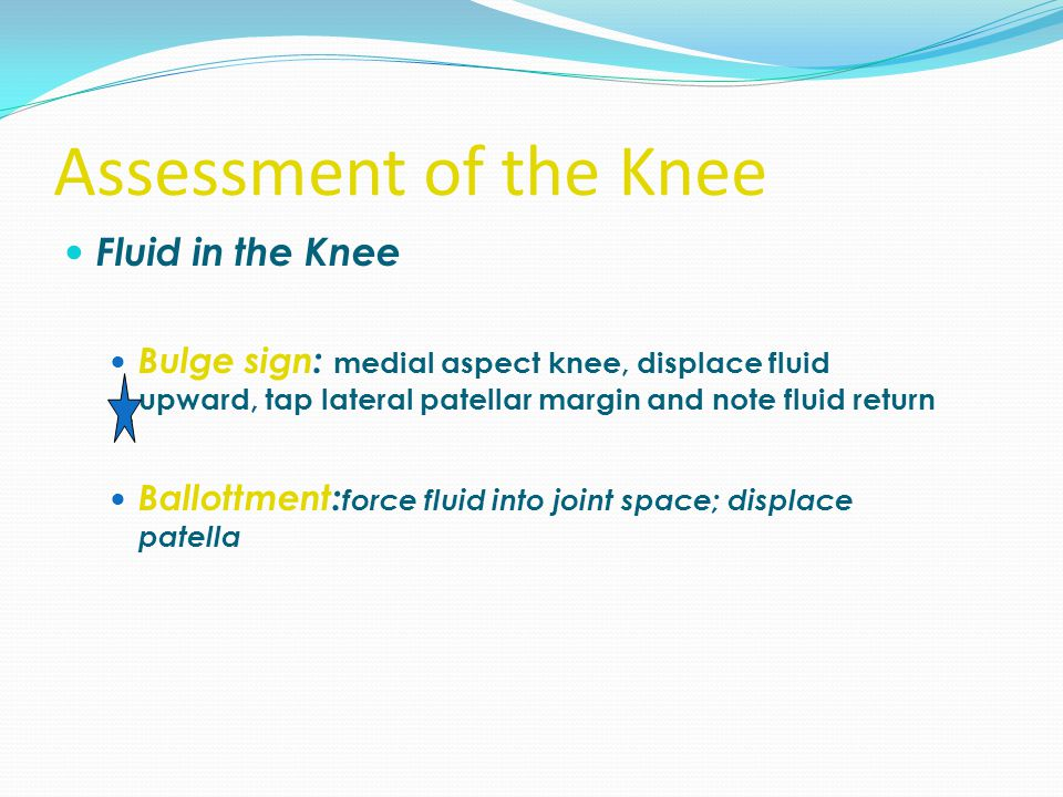 Assessment of the Knee Fluid in the Knee