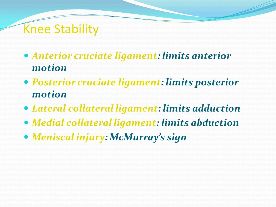 Knee Stability Anterior cruciate ligament: limits anterior motion