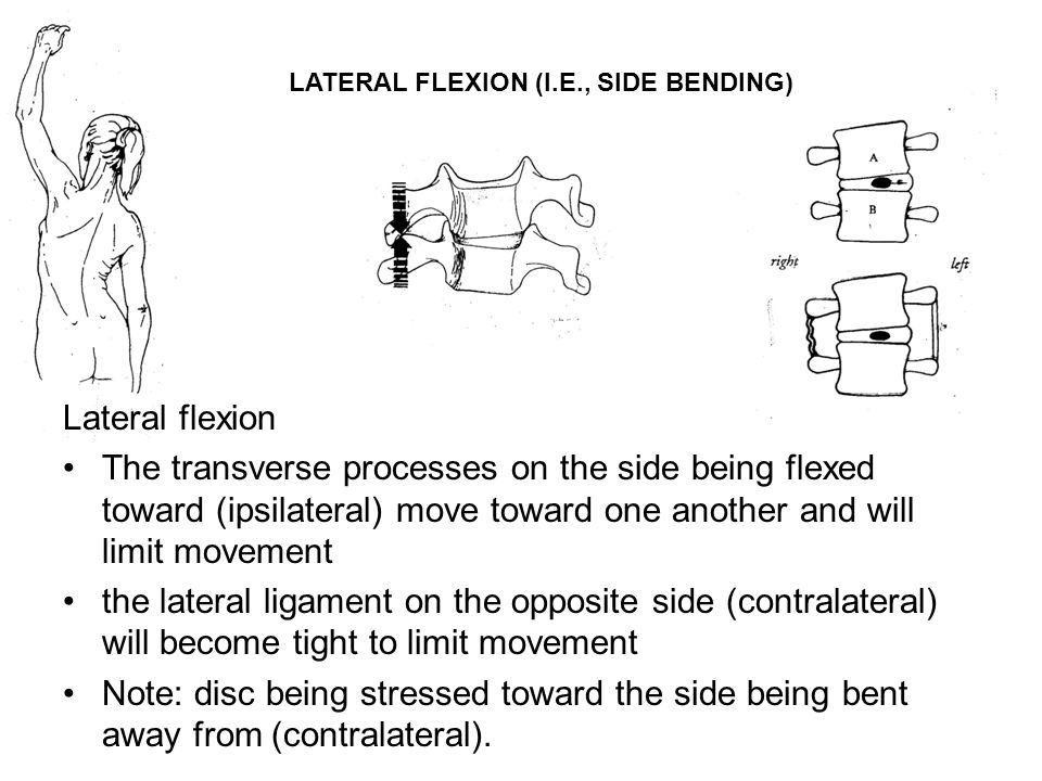 LATERAL FLEXION (I.E., SIDE BENDING)