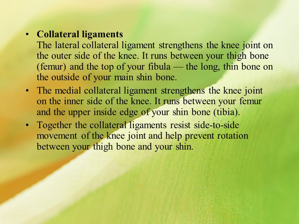 Collateral ligaments The lateral collateral ligament strengthens the knee joint on the outer side of the knee. It runs between your thigh bone (femur) and the top of your fibula — the long, thin bone on the outside of your main shin bone.