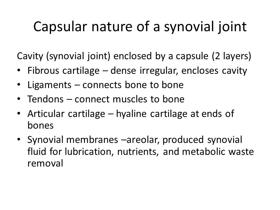 Capsular nature of a synovial joint